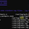 RaspberryPi cronが効かない → ログ表示設定して解決