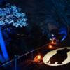 冬の夜のムーミンバレーパーク