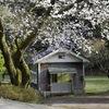 小屋の旅 031 (村と小屋)