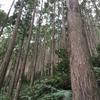 テーマの旅行「ハイキングツアー初級 熊野三山・中辺路ハイキング」に参加するまで、申し込みと準備