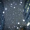 【写真】スナップショット(2018/1/26)雪