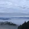 🐶「手作りキムチ」頂き物 今朝「雲海」🐶