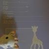 キリンのソフィーに付いてくるプロフィールの書き方(曖昧です)