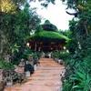 チェンライ山間の癒し系リゾート【Phu Chaisai:プーチャイサイ・マウンテンリゾート】