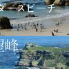 【ケープタウン】アフリカ大陸最南西端「喜望峰」と、野生のペンギンと会える「ボルダーズビーチ」は同時に観光しよう!