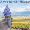 レンタルキャンピングカーで北海道9日間の旅2020【1】新千歳空港、ファーム富田、美瑛