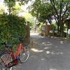 大泉緑地の「かきつばた園」を訪問!7月にはもう花は散った?【堺市&松原市】