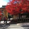 和歌山 高野山 紅葉が綺麗でした