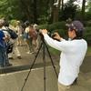 多磨霊園の探鳥会へ行って来ました2