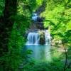 三段峡の新緑を撮る(聖湖口)