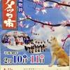 秋田の2月は、冬まつりで熱いのです。