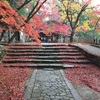 紅葉の絨毯が美しい紅葉の名所・滋賀県は永源寺へ