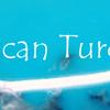アメリカン・ターコイズ:American Turquoise