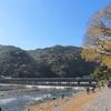 観光客は「密」が好き!? 京都の旅 by Goto 2020.11.24-27 Ara-kanふたり旅 1日目〔中編〕