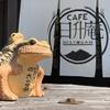 筑波山までハンバーガーライド、コロナ対策も素晴らしい茨城県!