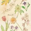 春を告げるリコールカード