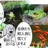 【犬漫画】金魚の楽園への闖入者