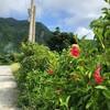 しまじまの旅 たびたびの旅 61 ……花の香りと核のゴミ