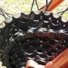 紀の川北岸自転車生活 Gravierもチェーンを清掃する&その後、夜勤明けサイクリングで和歌浦方面へ