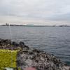 NCさんと根岸港へ釣りに。