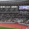 ラグビー全国大学選手権決勝 新国立競技場
