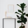 新生活の象徴は観葉植物とフロアライト