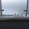 初雪です!雪だるまを3体つくりました!
