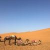 モロッコ旅行記:番外編~旅行会社スペースワールドの口コミを書いてみる~