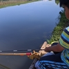 今、親子でよく使うへらぶな釣りのグルテンえさ3選!