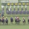 北村、丸山両騎手がもっとペースを上げさしてほしかった。 宝塚記念 2019