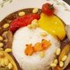 遊佐野菜カレー