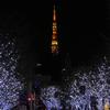 東京タワーとけやき坂イルミネーションを一緒に写せる3つのオススメスポット