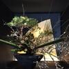 東京国立博物館『博物館に初もうで』