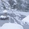 京都・京北 - 圧巻の雪景色 常照皇寺の冬