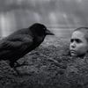 映画感想/異端の鳥_The Painted Bird