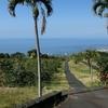 ハワイ旅行2015 三日目:UCCハワイ直営農園で焙煎体験、ホエールウォッチング