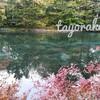2019 軽井沢の雲場池へ紅葉を見に行ってきました!オススメの観光スポットとお土産の裏技