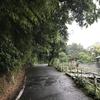 北鎌倉・瓜ヶ谷やぐら群〜縁結びの葛原岡神社神社(前編)