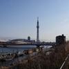 本日晴天なれど、冬寒し!!
