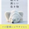 【おすすめ本】ねむくなったらおやすみなさい、枕元に置きたい5冊(冬編)