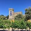NAPAのワイナリーツアー Castello di Amorosa