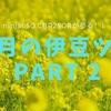 「伊豆半島」2月の男二人旅の記録。キンメと猿ツーリング(ninja650) 〜Part 2〜