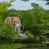 初夏の地球博記念公園・前編 緑ワサワサ