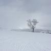 【北海道富良野市】富良野スキー場~転んでも痛くない&安心設計のコース~