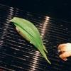 寿司についての目標!