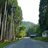 山道とアスファルト道路