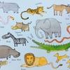 動物の鳴き声、英語でなんていう?
