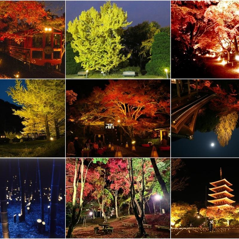 【2021】幻想的な紅葉の世界へ!京都日付順・紅葉ライトアップ11選