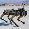 DMM英会話 Daily News 予習復習メモ:Robot Dogs Join US Air Force Exercise