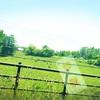 春の北海道 day2